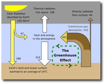 the water vapor carbon dioxide and methane as main causes for the greenhouse effect The greenhouse effect insulates the earth's surface, making it hospitable to life however, human activities have increased the concentration of these gases, causing global warming terms greenhouse gasesgases such as water vapor, carbon dioxide, ozone, and methane that absorb and trap heat as it tries to escape from the earth's atmosphere.